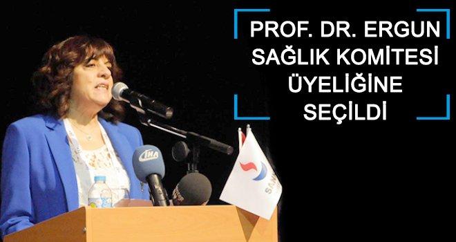 Prof. Dr. Ergun'e önemli görev!..