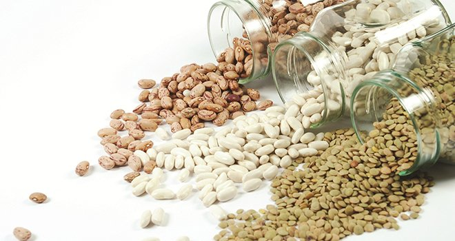 151 ülkeye Güneydoğudan gıda ihracatı