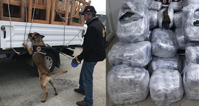 Adli memur, uyuşturucu kaçakçılığı yaparken yakalandı