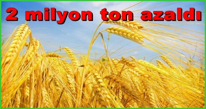 Buğday üretimi 2016 yılında 2 milyon ton birden azaldı
