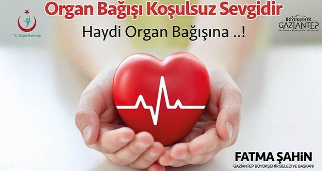 Büyükşehir'den organ ve doku bağış belgesi