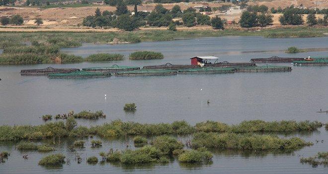 Büyükşehir'den bir ilk, Karkamış sulak alanı...