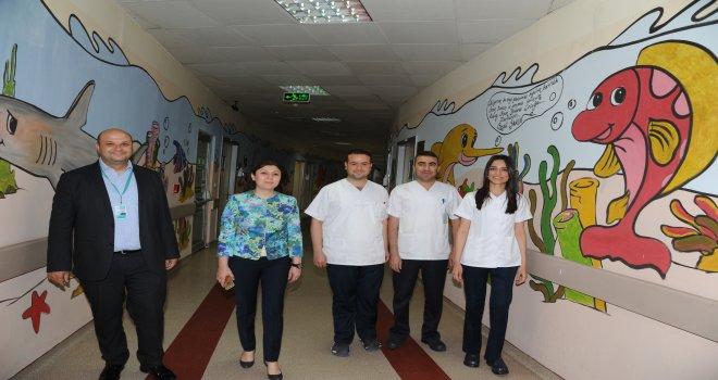Cengiz Gökçek Hastanesi'nin projesi en iyi örnek seçildi