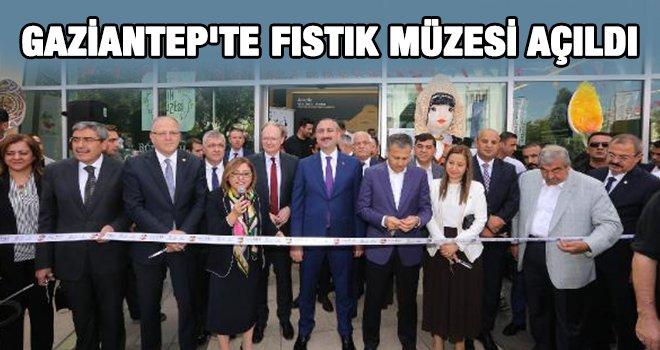 Dünyanın ilk Fıstık Müzesi'nin açılışı yapıldı