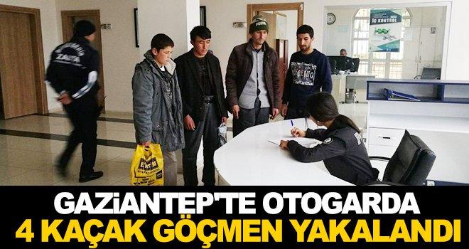 Gaziantep'te 4 kaçak göçmen sahte kimlikle yakalandı