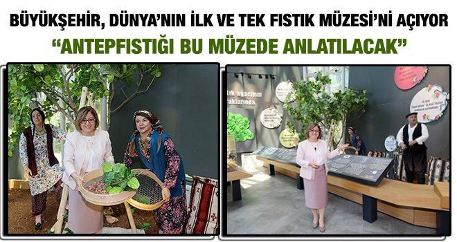 Gaziantep'te, 'Antep Fıstığı Müzesi' açılacak