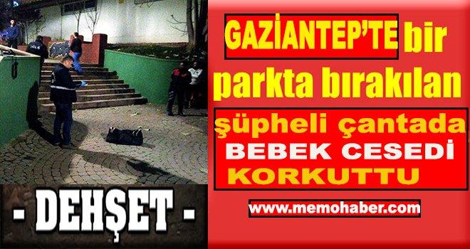 Gaziantep'te Parkta valize buzla konulmuş bebek cesedi bulundu
