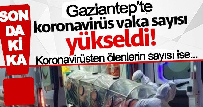 Gaziantep'te Koronavirüs'ten ölü ve vaka sayısı arttı!..