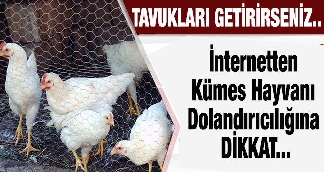 Gaziantep'te ilan vererek yakayı ele verdi...