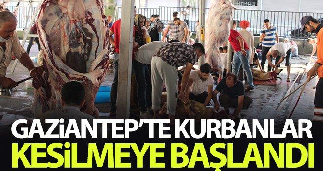 Gaziantep'te kurbanlar kesilmeye başlandı