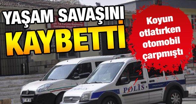 Gaziantep'te otomobilin çarptığı şahız öldü!..