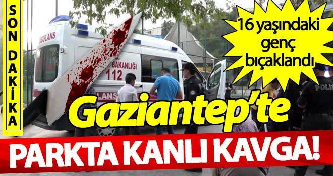 Gaziantep'te parkta dehşet! Gençlerin kavgasında kan aktı