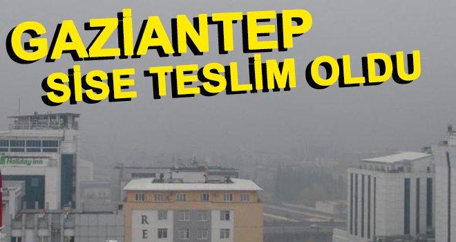 Gaziantep'te sis, günlük yaşamı olumsuz etkiledi!..