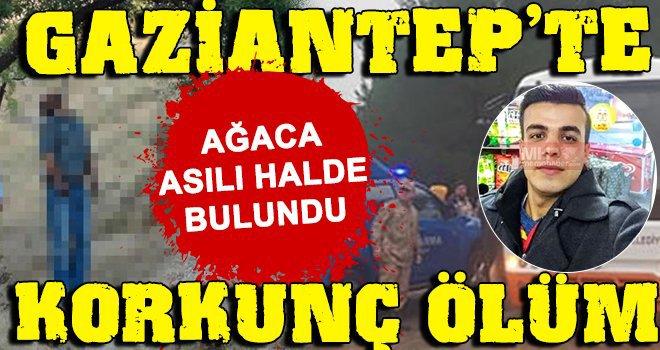 Gaziantep'te şok intihar! Ağaçta asılı halde bulundu