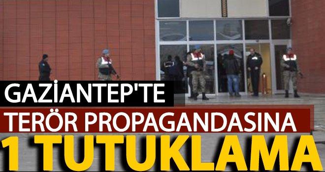 Gaziantep'te sosyal medya propagandasına 1 tutuklama