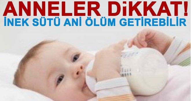inek sütü bebeklerde alerji ve ölüm getiriyor