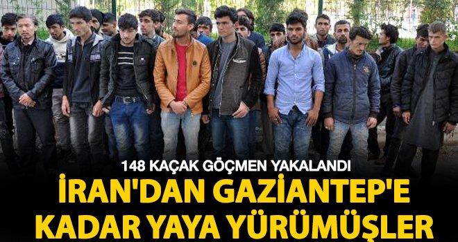 Kaçak göçmenler Gaziantep'e kadar yaya gelmişler