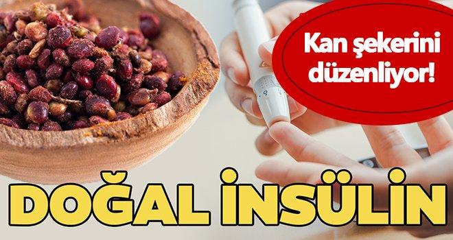 Kan şekerini düzenliyor! Doğal insülin...