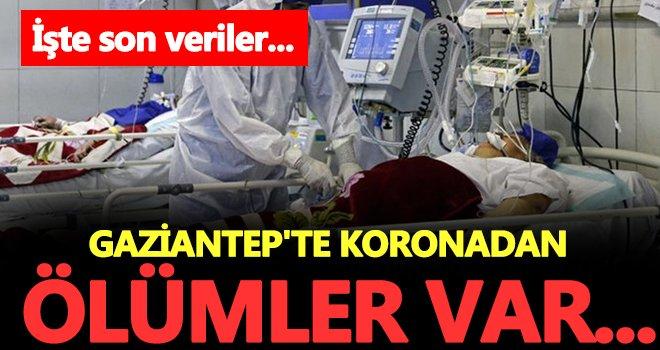 Koronavirüs Gaziantep'te kol geziyor! Ölü sayısı artıyor