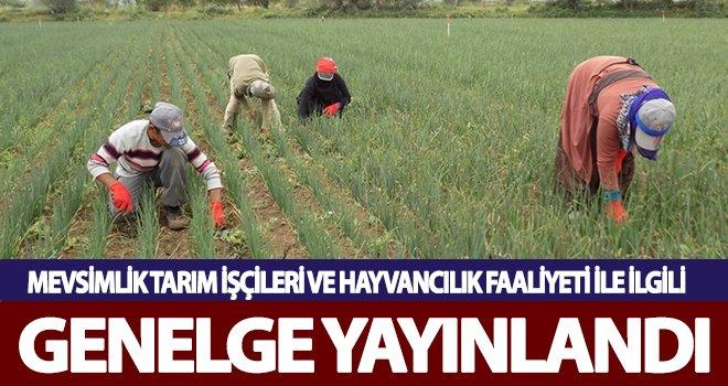 Mevsimlik tarım işçileri ve hayvancılık faaliyeti ile ilgili genelge yayınlandı