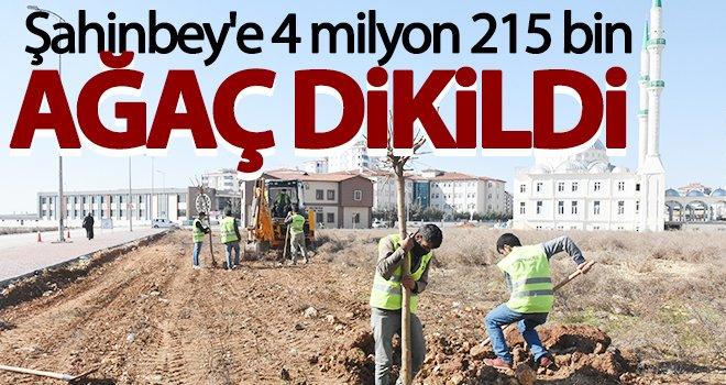 Şahinbey'e 4 milyon 215 bin ağaç dikildi