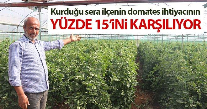 Seracılık ile yılda 160 ton domates topluyor