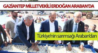 Gaziantep Milletvekili Mehmet Erdoğan Araban'da