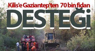 Kilis'e Gaziantep'ten 70 bin fidan desteği