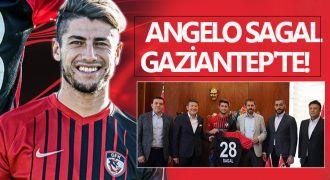 Sagal Gaziantep'le anlaşmaya vardı!