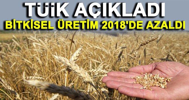 Tahıl üretimi bir önceki yıla göre azaldı