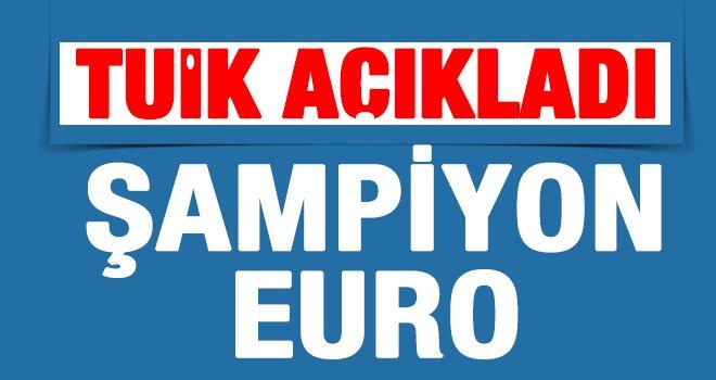 TUİK'in verilerine göre şampiyon Euro