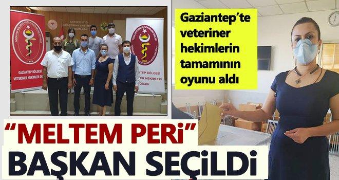 Veteriner Hekimler Odasında seçim heyecanı: Peri başkan seçildi