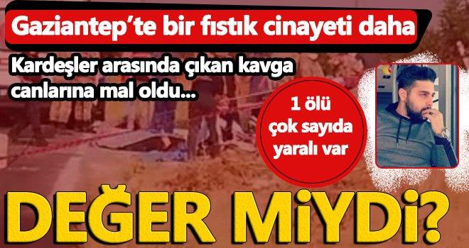 Yine Gaziantep yine cinayet! Fıstık kavgası canlarına mal oldu